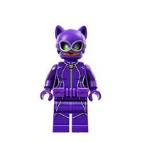 Catwoman™ (70902)